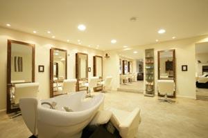 Rear Salon 2